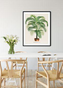 Cocos Leaf Vintage
