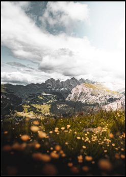View In Alps With Flowers In The Foreground