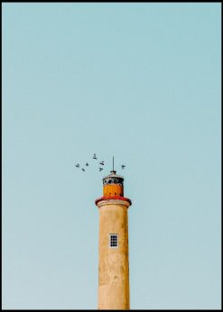 Birds On Top Of The Lighthouse