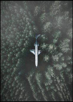 Airline In Green Forest