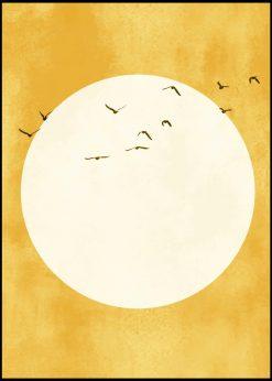 Eternal Sunshine by Kubistika
