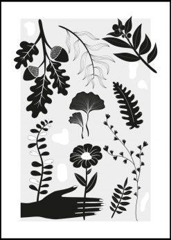 Woods by Sanny Lundgren
