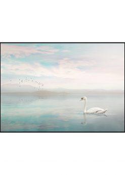 Swan by Jenni Tervahauta